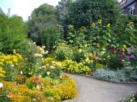 Ogród pełen bylin