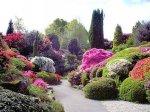 Ogród marzeń